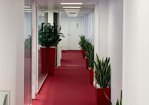 couloir SBP